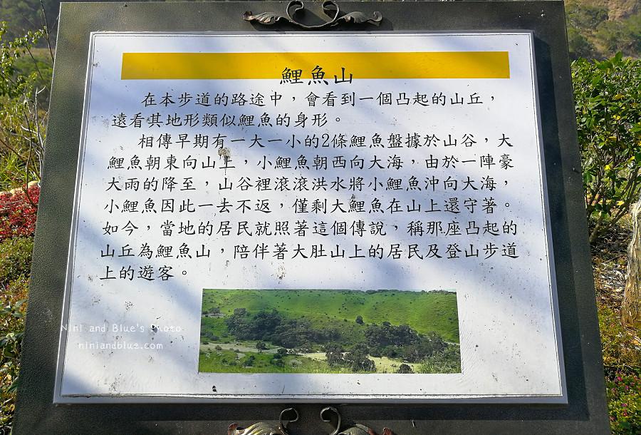 台中竹坑南寮登山步道13