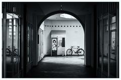 Picture Bike