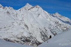 Crêtes enneigées, Zermatt :copyright: Bernard Grua