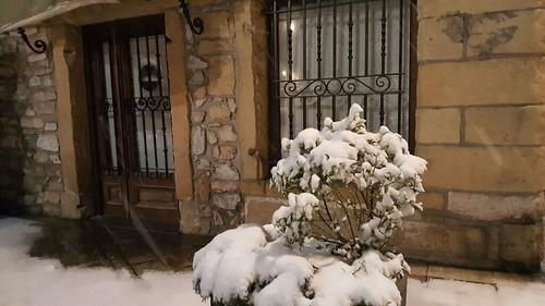Elurra Lezon 2018-02-28