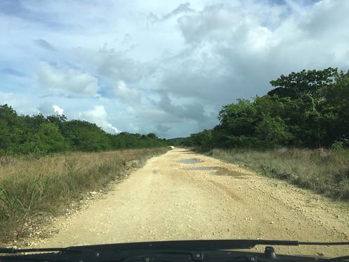 132 - Feldweg nahe Montellano 3