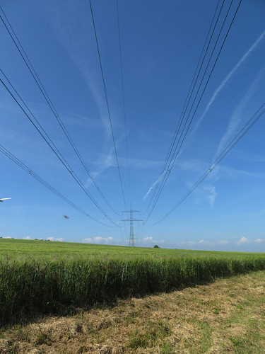 20170601 05 092 Regia Feld Bäume Windräder Stromleitungen