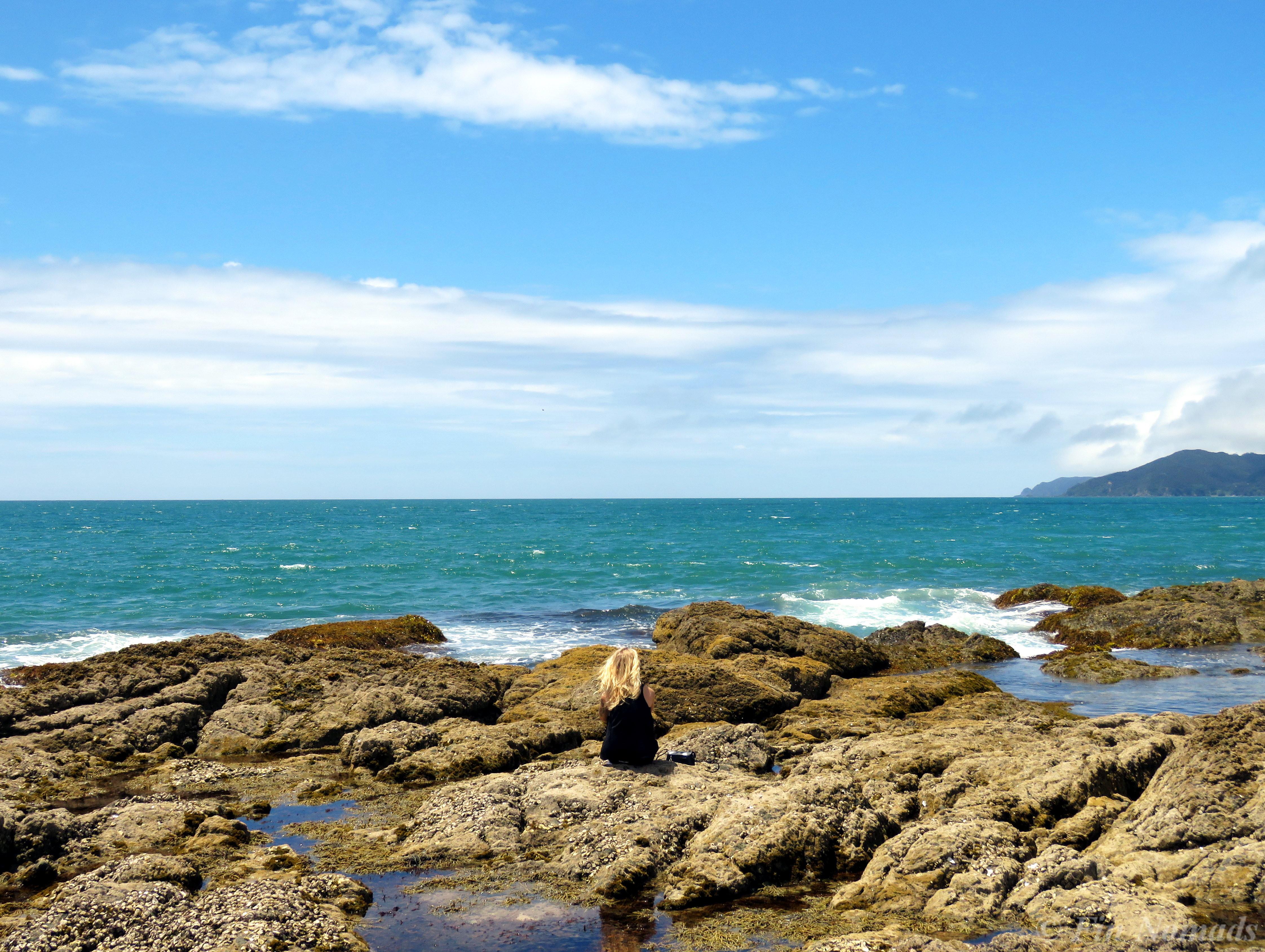 Mangowai beach NZ