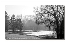 Les étangs gelés