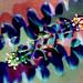 abtraccion floral by ojoadicto