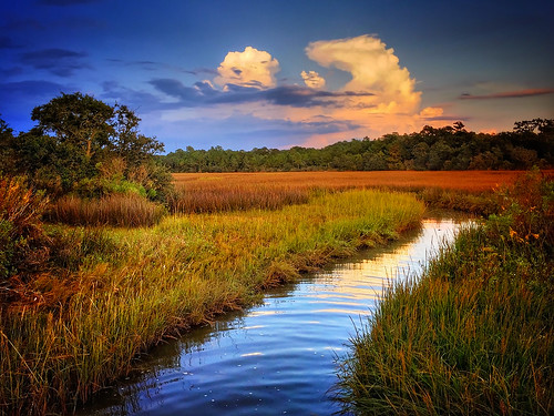 Marshland sunset in Coden Alabama