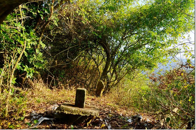 芒果坑山山頂自然石森林三角點及難化水庫三角點