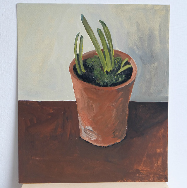 small terracotta pot with bulb shoots