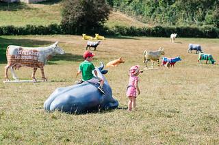 En Corrèze, tourisme rural autour de vaches pas comme les autres - Carte de France touristique