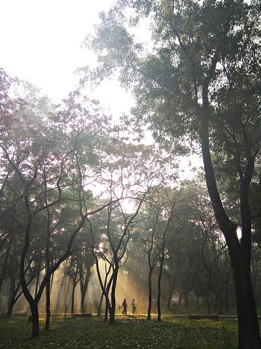 ature run jog walking health sunrise sunlight nature park parklife bangla bd sunrays rays chat morning