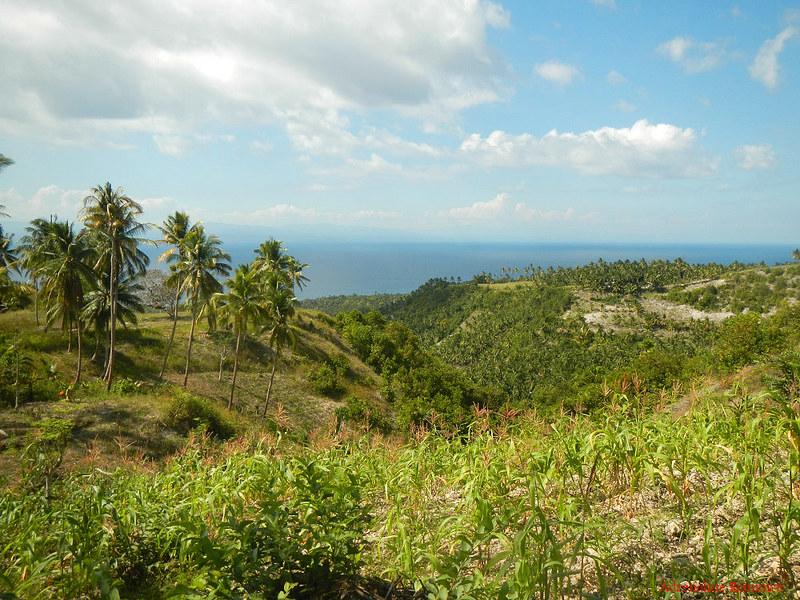 Border of Samboan and Ginatilan