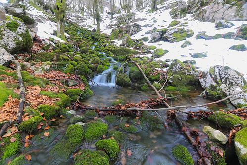 Parque Natural de Gorbeia #DePaseoConLarri #Flickr -62