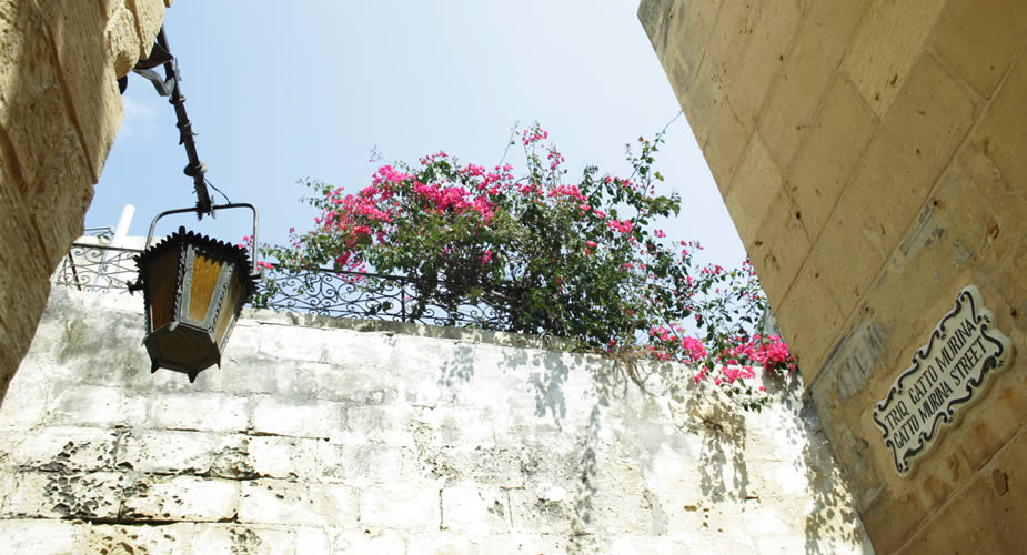 Dagtrip op Malta: Mdina, tips | Mooistestedentrips.nl