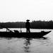 Hoi An-Fisherman