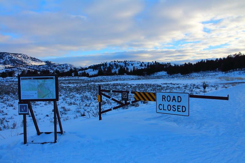 IMG_7666 Tower Fall Ski Trail, Yellowstone National Park