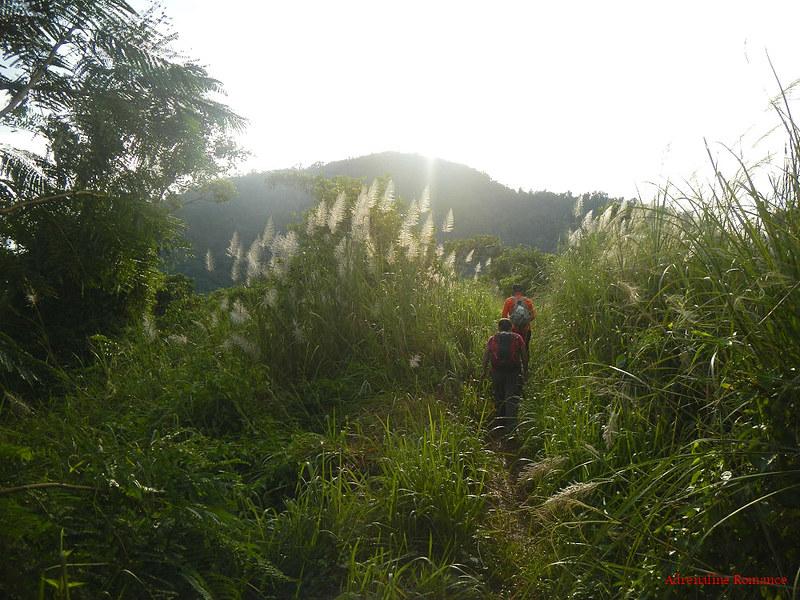 Trekking to Mt. Maculot's Summit