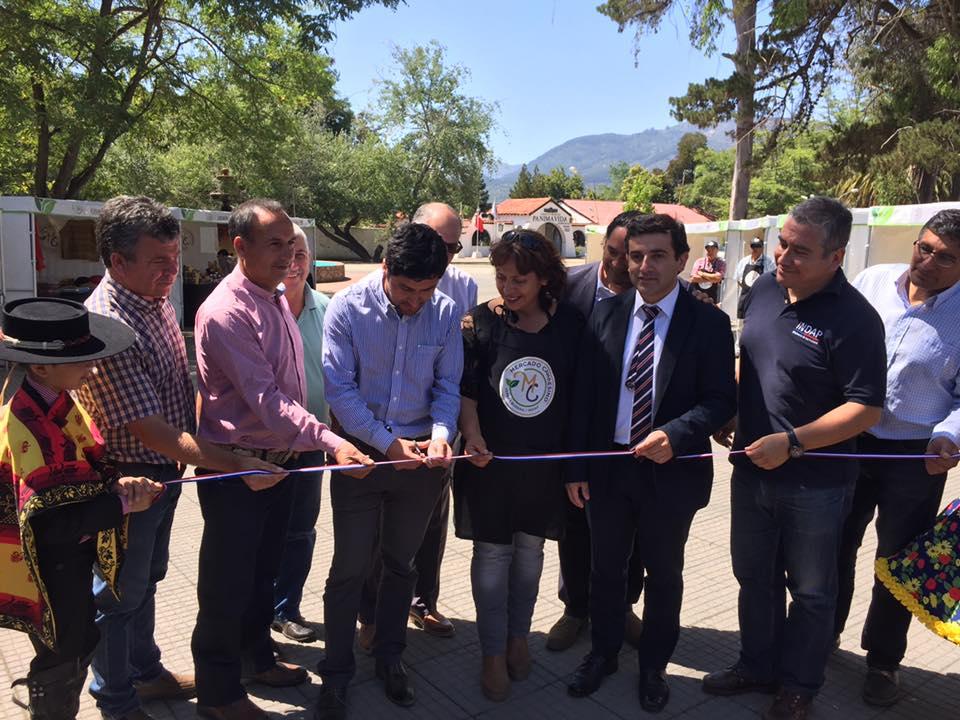 COLBÚN; Alcalde Inaugura el Primer Mercado Campesino