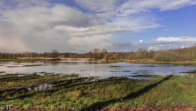 Natte boel/Wet landscape, Sony DSC-RX10, 24-200mm F2.8