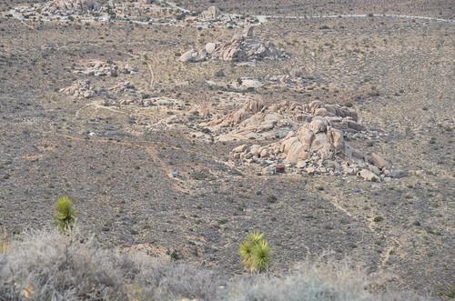 Joshua Tree - Ryan Ranch overview
