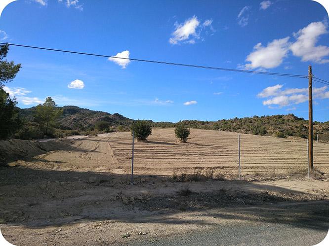 Denuncian una nueva roturación de 14 hectáreas en Murcia para regadíos ilegales