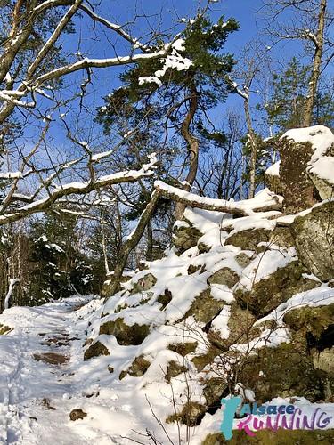 Trail hivers 2018