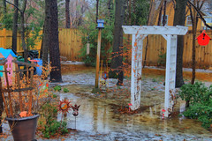 Photo of Flooding Back Yard
