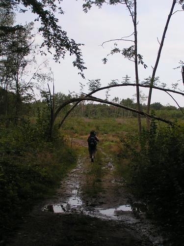 20070830 11576 0706 Jakobus Weg Wasser Matsch Bogen ElisabethB Margarete Pilger