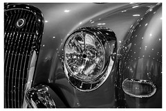 Jaguar Chrome