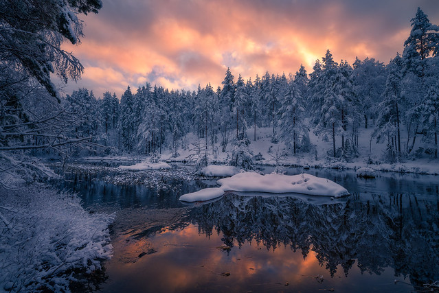 Winter Peace III