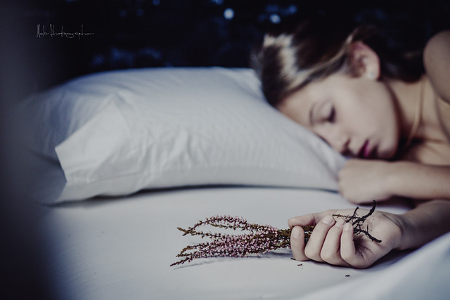 Dulces sueños con Litel Pipol... Semana 36 (Quinto Año)