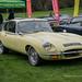 Classic Car Show - Weston Park, Shropshire