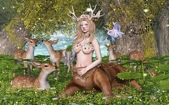 ❀ Look Carol145 Bebb ❀ # 772