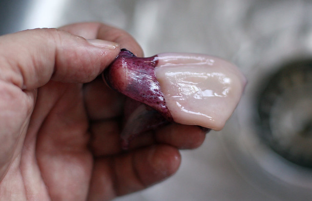 Chipirones con cebolla caramelizada (13)
