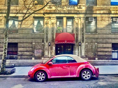 Upper West Side Little Red Bug