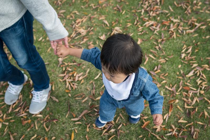皇居外苑の芝生と枯れ葉の上を歩く子ども