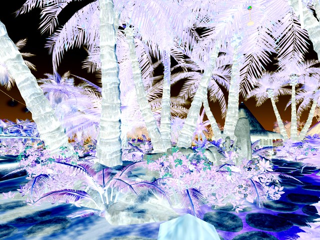 K.I.S.S. Island  - Palmed Surrealism