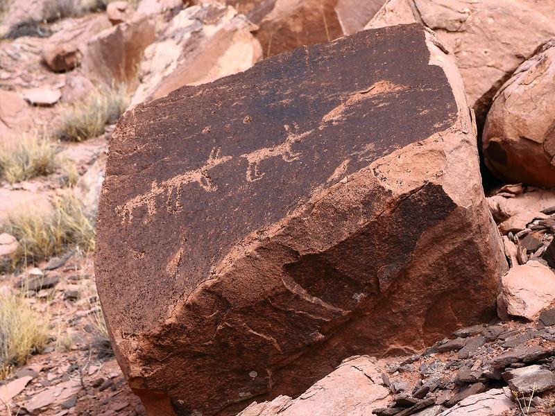 IMG_7985 Pronghorn Petroglyph?