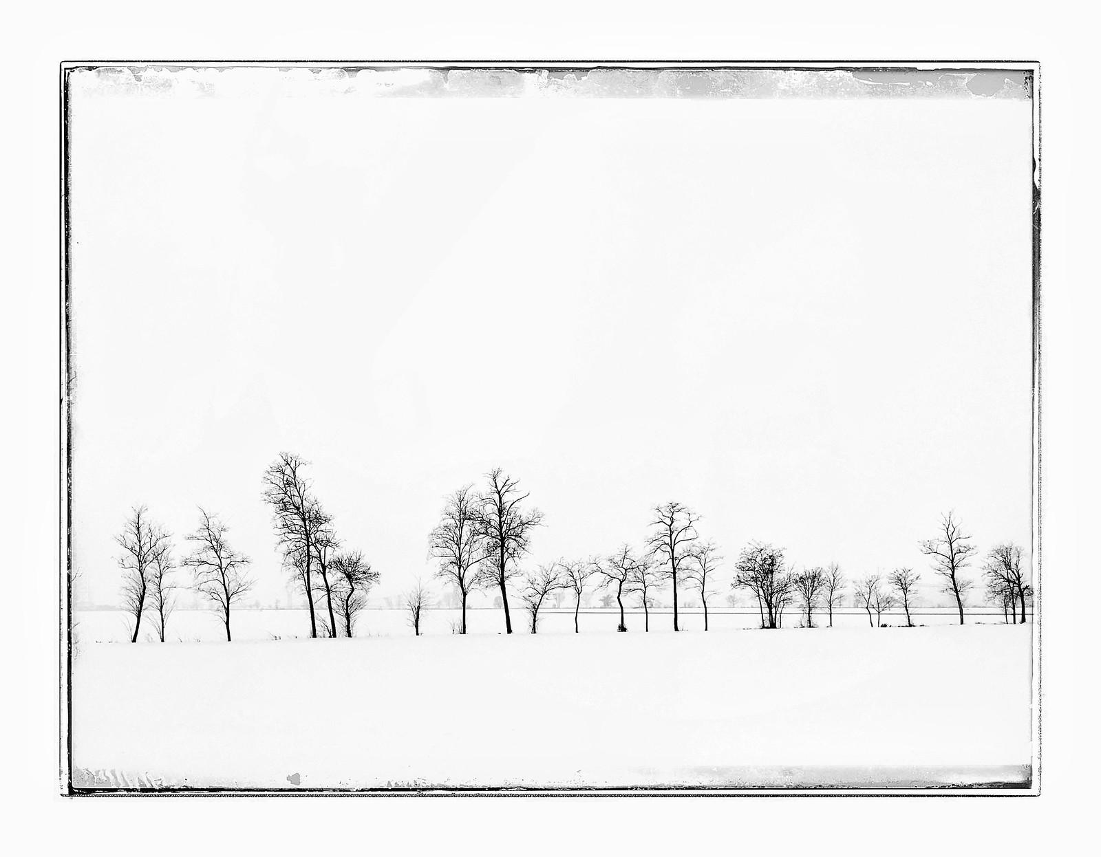 IMG_1913