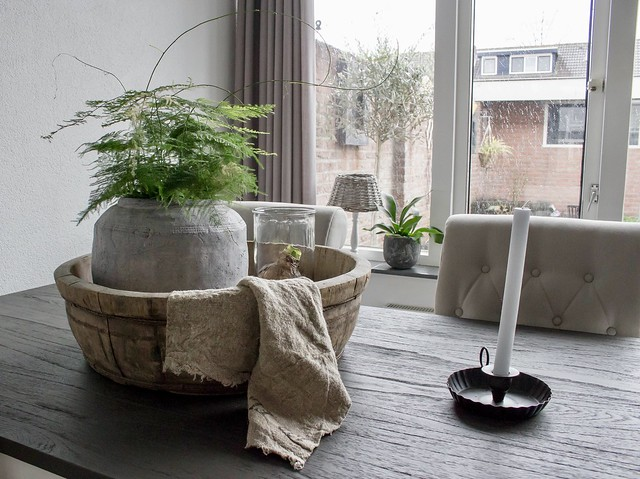 Olijfbak kruik met Asparagus plant landelijk