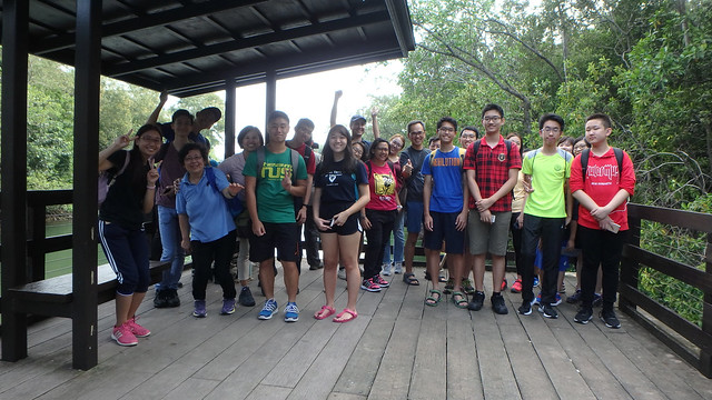 Sea Our Shores Workshop on Nature Guiding by Lepak in SG, Feb 2018 at Pasir Ris Mangrove Boardwalk with the Naked Hermit Crabs