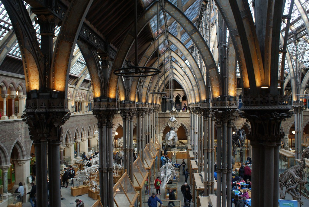 Superbe charpente métallique du Musée d'histoire naturelle de l'Université d'Oxford.