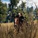 The Witcher 3: Wild Hunt / Through The Fields