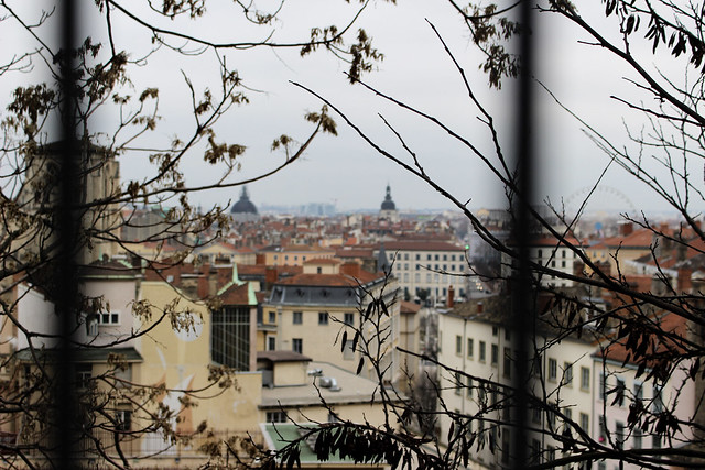 View from a window through iron bars of the city of Lyon.
