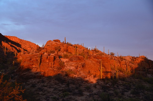 Tucson West Gate sun on rocks