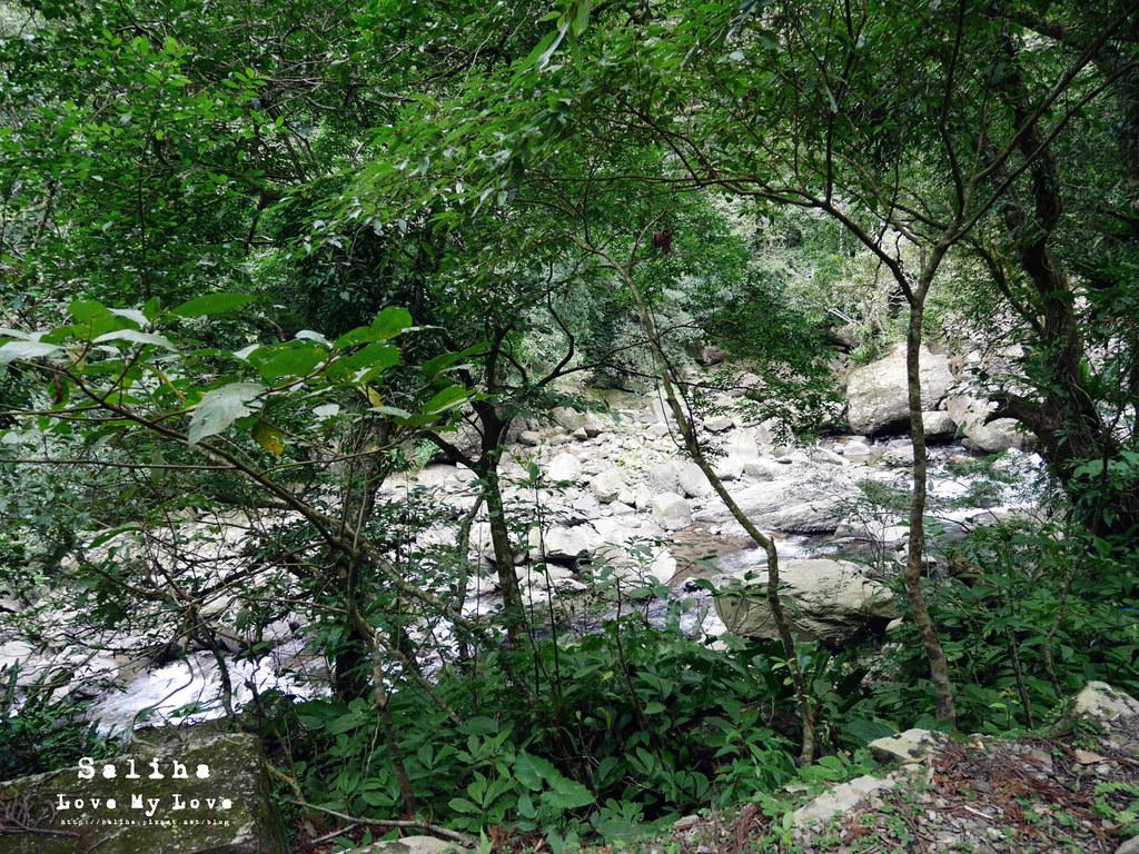 新北三峽一日遊踏青景點推薦滿月圓森林遊樂區 (9)