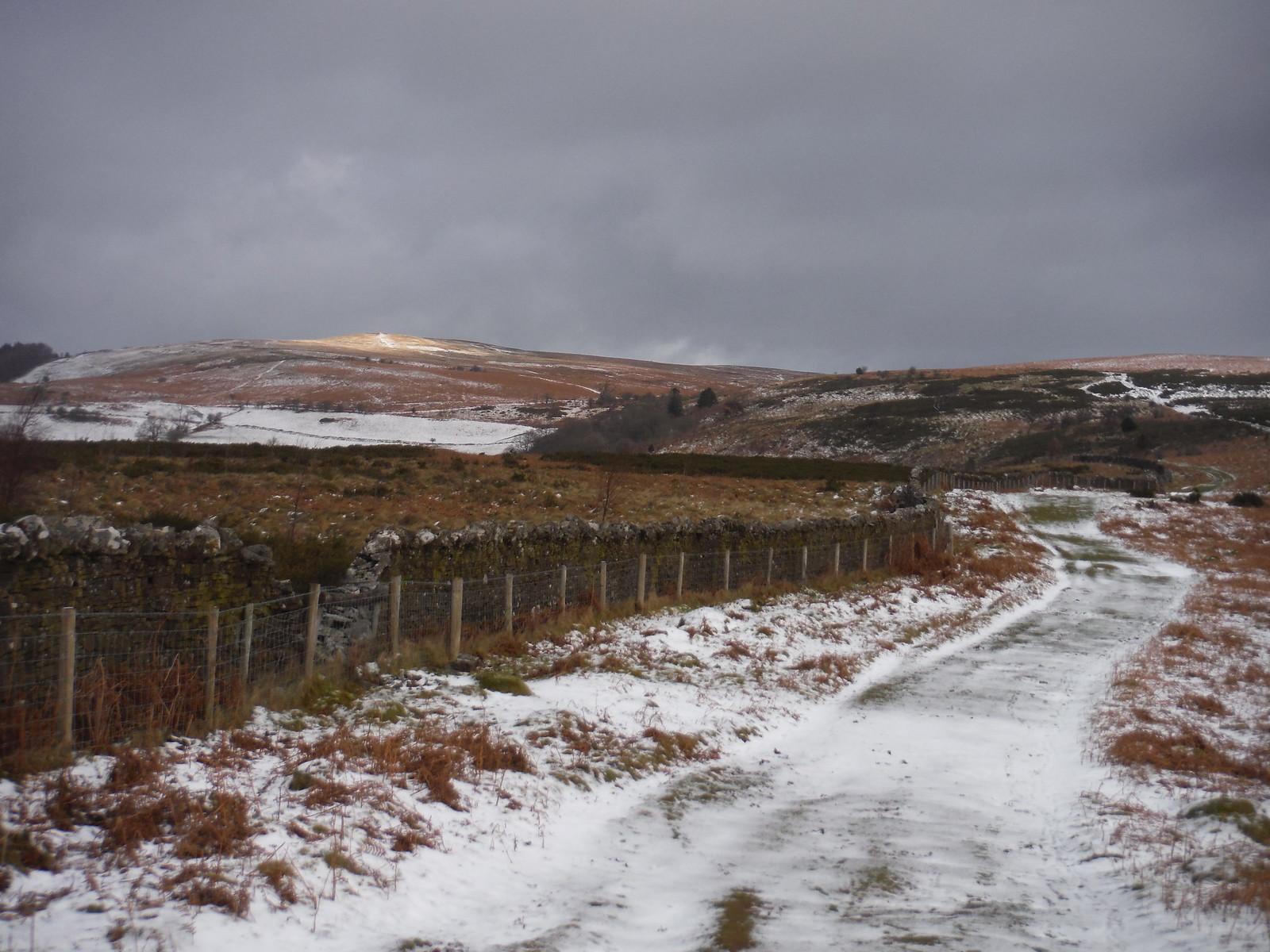 Mynydd Llangorse in the Sun SWC Walk 308 - Bwlch Circular (via Mynydd Troed and Llangorse Lake)