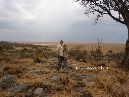 Dry savannah in Serengeti, Tanzania, Africa. From Through the Eyes of an Educator: Nature's Elements
