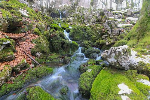 Parque Natural de Gorbeia #DePaseoConLarri #Flickr -68
