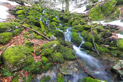 Parque Natural de Gorbeia #DePaseoConLarri #Flickr -64