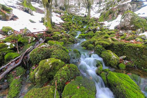 Parque Natural de Gorbeia #DePaseoConLarri #Flickr -63